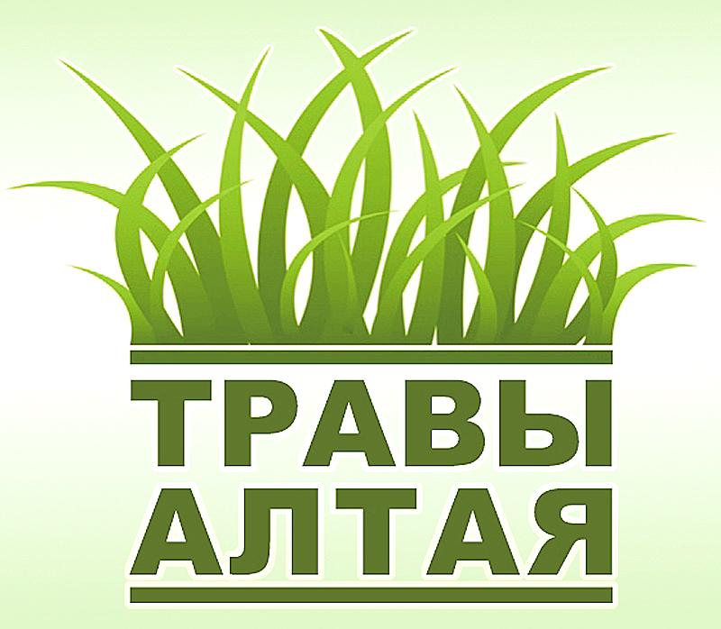 Травы Алтая